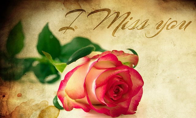 Missing Day: Wishes, Quotes, SMS, Message, Status, Greetings, Shayari, images